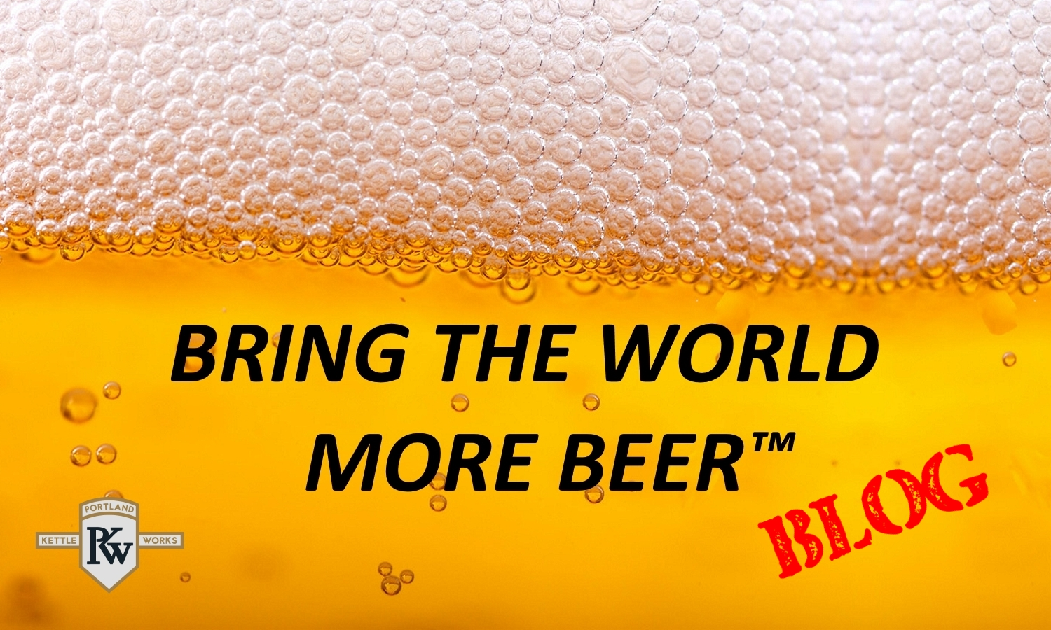 Bring the World More Beer Blog